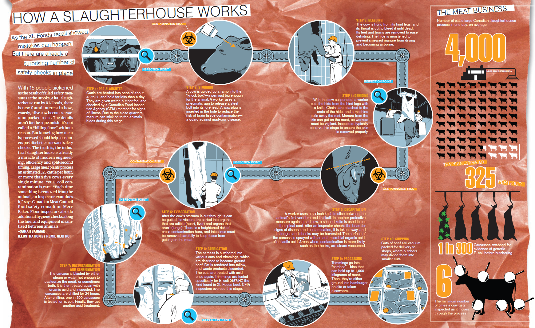 How a Slaughterhouse Works